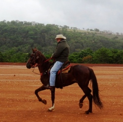brasil, minas gerais, manga larga machadao, cavalgada em jaboticatubas, horse riding in brazil