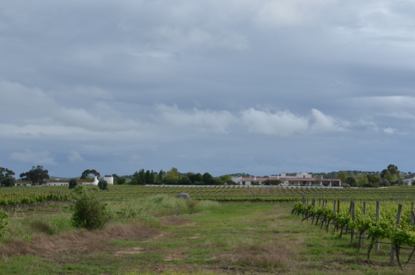 portugal countryside, country side, spring, alentejo, redondo, évora, south of portugal, best places to relax, best hidden places, holidays