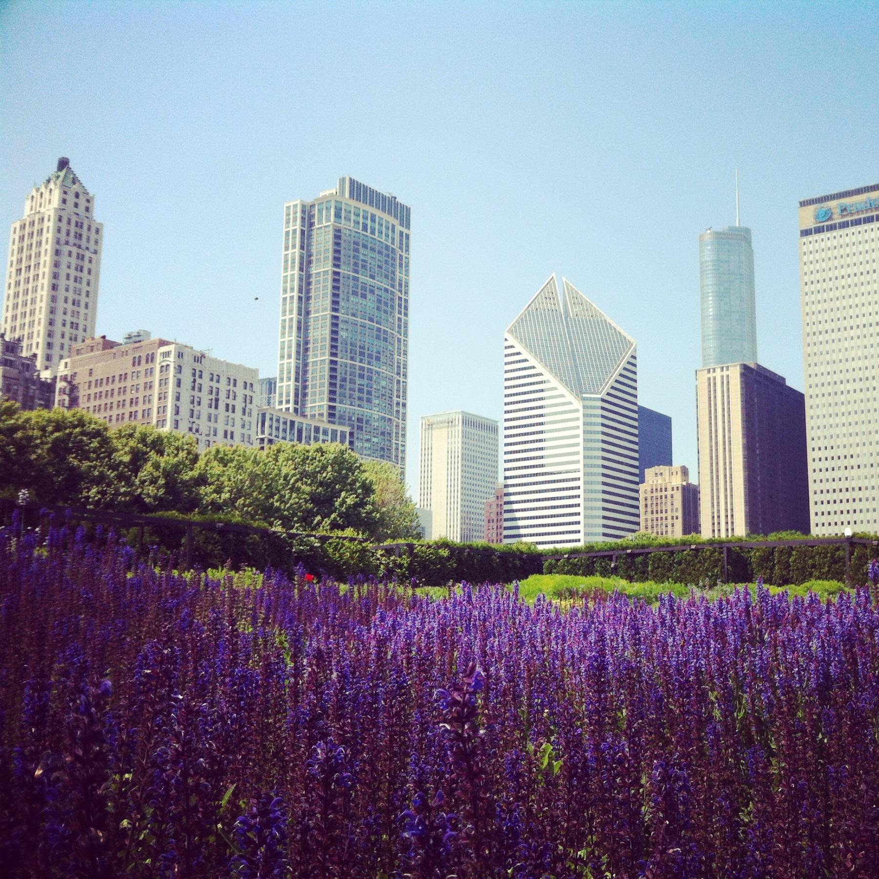 Chicago, Millennium Park, us, usa, america, united states