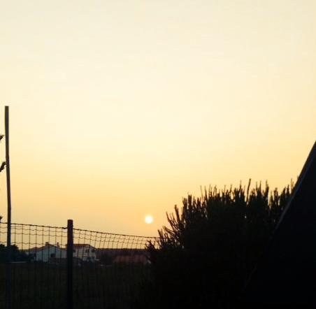 sunset arrifana, arrifana beach, costa vicentina, alentejana coast, portugal, portuguese southwest coast,