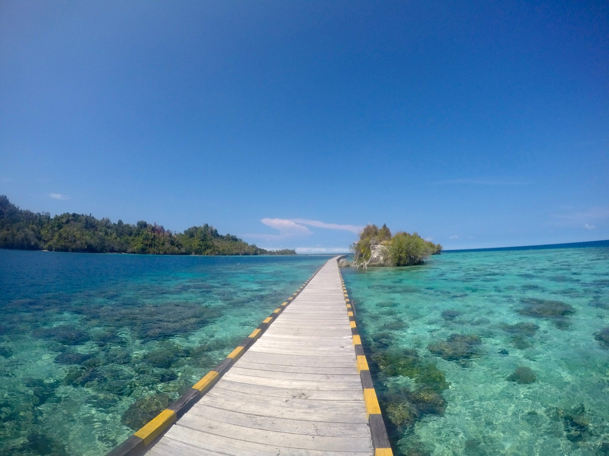 Paradise on Earth: The Togian islands, the best kept secret of Indonesia
